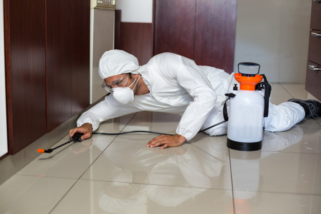 Sanitização de ambientes, saiba a importância desse serviço no combate ao coronavirus